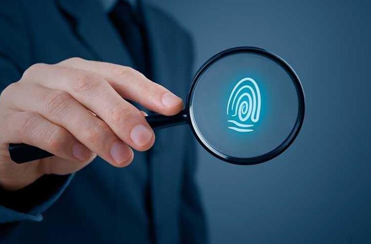 Providing Investigatory/Detective Services